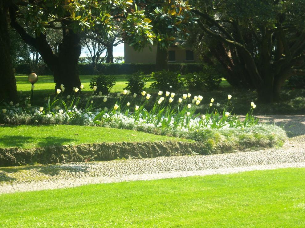 Progettare Il Giardino Da Soli : Arbogreen. manutenzione e progettazione giardini ed aree verdi a